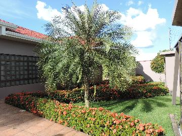 CACOAL PRINCESA ISABEL Casa Venda R$1.350.000,00 3 Dormitorios 3 Vagas Area do terreno 800.00m2 Area construida 382.00m2