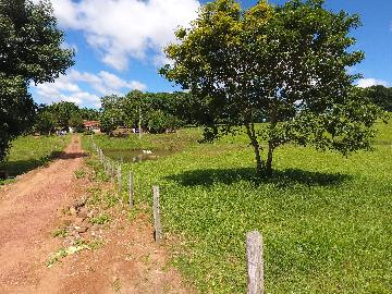 CACOAL ZONA RURAL Rural Venda R$1.200.000,00  Area do terreno 500000.00m2